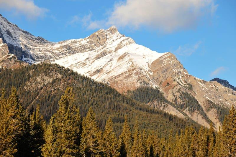 Download Montagne E Foreste Della Neve Fotografia Stock - Immagine di montagna, lago: 7320352