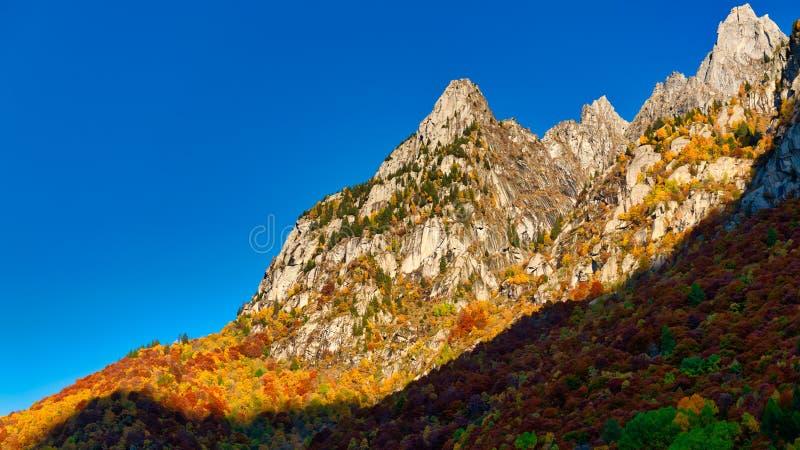 Montagne e foreste nella stagione autunnale fotografie stock