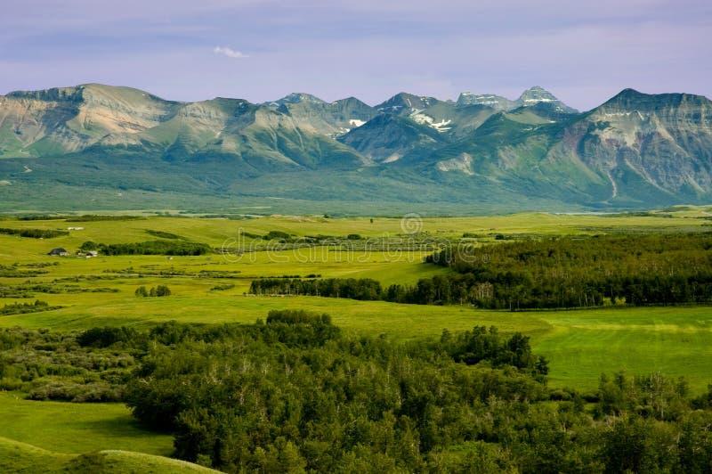 Montagne e praterie fotografia stock libera da diritti