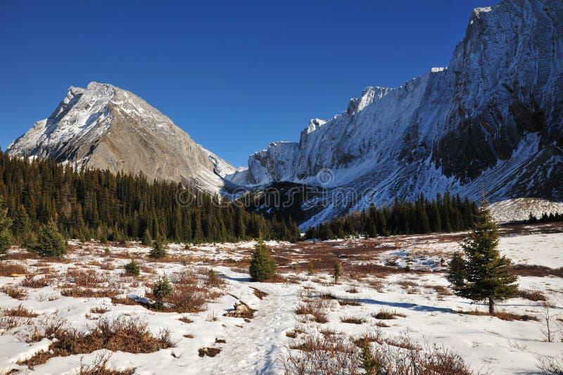 Montagne e prati di inverno immagine stock