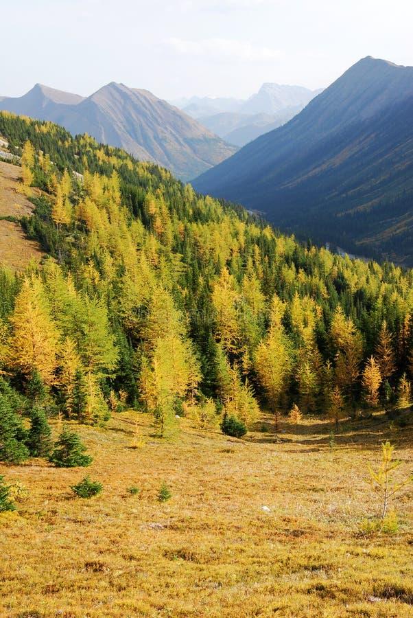 Download Montagne e valle immagine stock. Immagine di colori, nave - 7317993