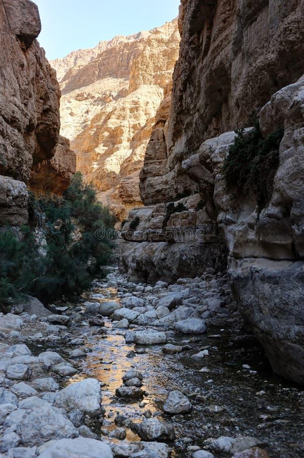 Montagne ed acqua nella riserva naturale di Ein Gedi fotografia stock libera da diritti