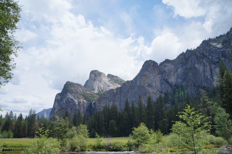 Montagne ed alberi di Yosemite fotografia stock