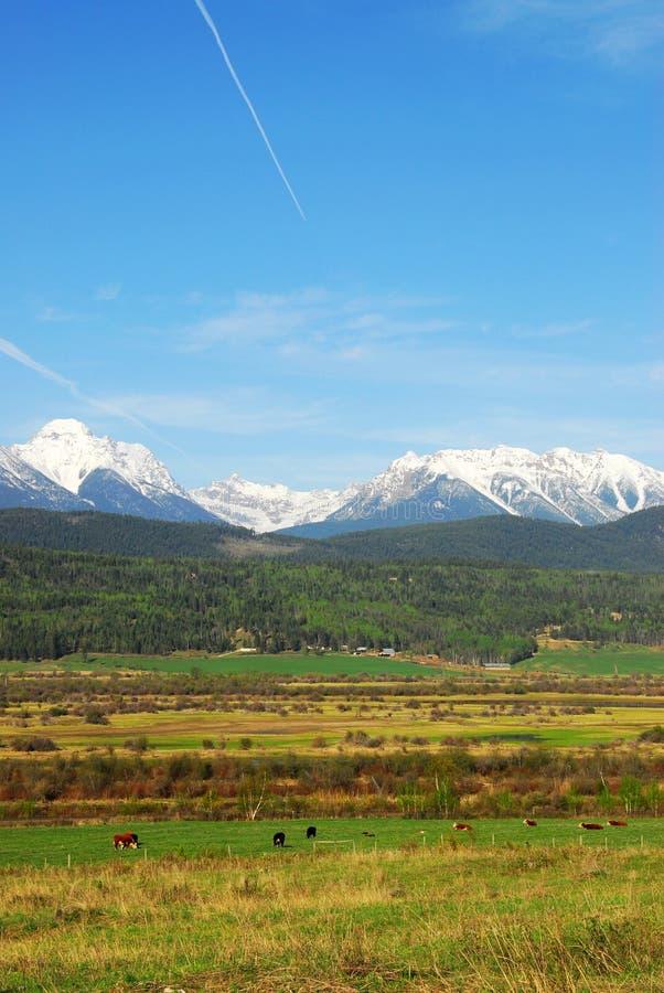 Montagne ed aziende agricole della neve fotografie stock libere da diritti