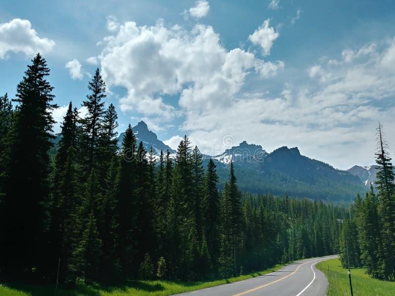 Montagne elevantesi sul modo al parco nazionale di Yellowstone immagini stock libere da diritti