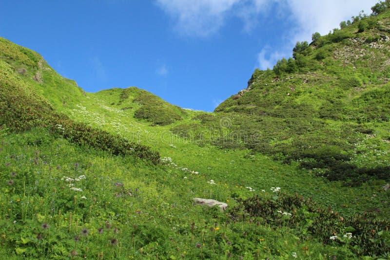 Montagne en Russie, Krasnaya Polyana Ciel tr?s bleu photos stock