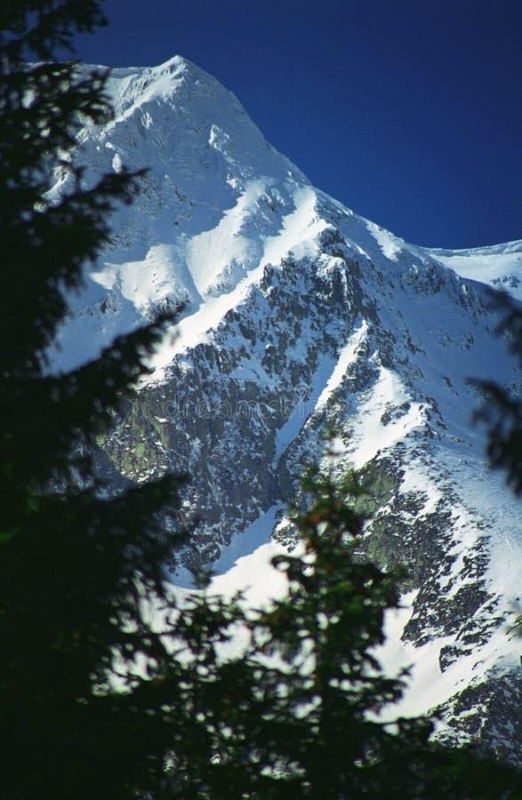 Montagne escarpée et Snow-covered photographie stock libre de droits