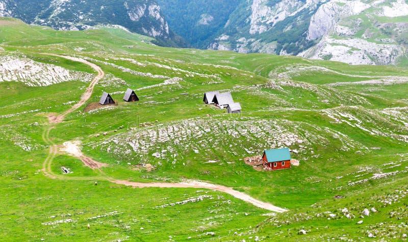 Montagne et paysage vert de Monténégro photo libre de droits