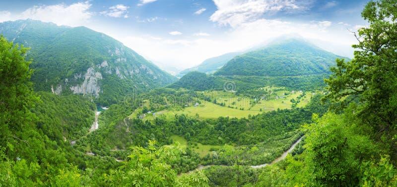 Montagne et paysage vert de Monténégro photos libres de droits