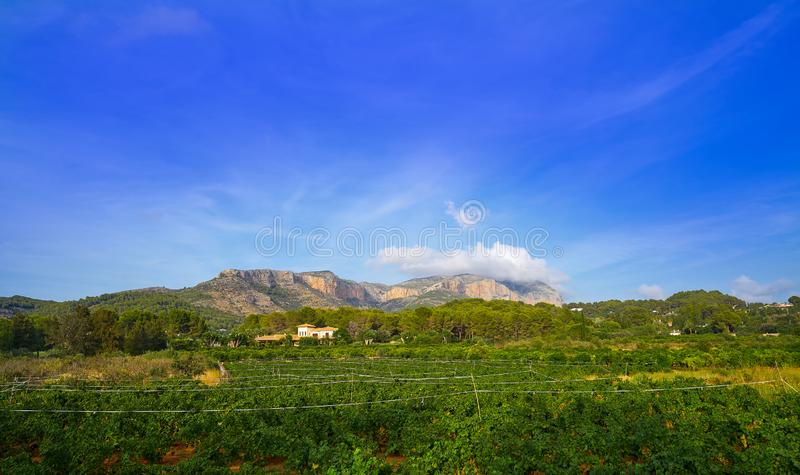Montagne et vignobles de Montgo en Espagne photographie stock