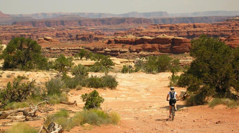 Montagne faisant du vélo Canyonlands photo stock