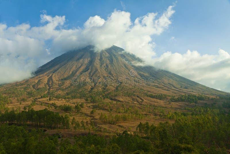 Montagne in Flores centrale, Indonesia fotografia stock libera da diritti