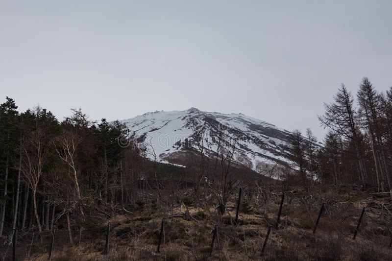 Montagne Fuji au Japon photographie stock