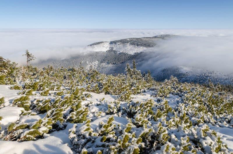 Montagne giganti nell'inverno, repubblica Ceca fotografie stock libere da diritti