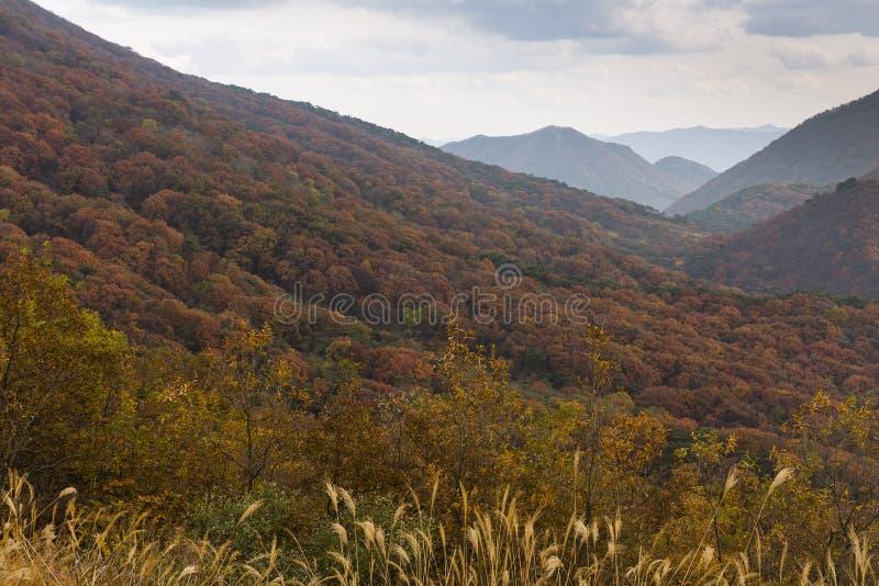 Montagne intorno a Gwangju immagine stock libera da diritti