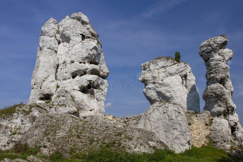 Montagne jurassique polonaise photo libre de droits