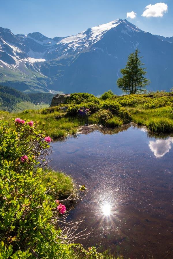 montagne-lac de réflexion du soleil photographie stock libre de droits