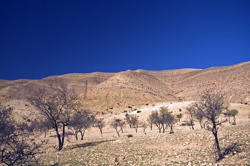 Montagne, Marocco fotografia stock libera da diritti