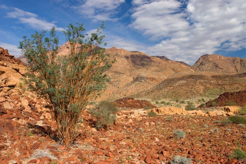 montagne Namibie d'horizontal de désert de brandberg image libre de droits
