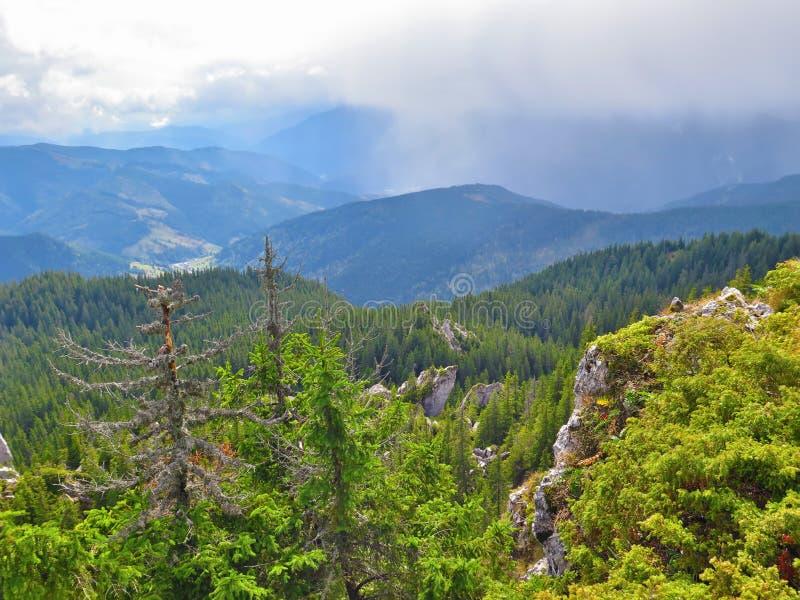 Montagne nebbiose rumene fotografia stock
