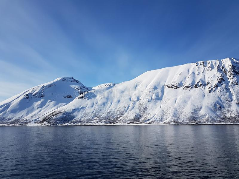 montagne neigeuse gentille photos libres de droits
