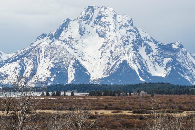 Montagne neigeuse massive au parc national grand de Teton images libres de droits