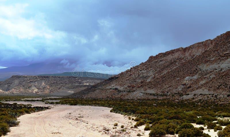 Montagne nel Altiplano cileno immagini stock libere da diritti