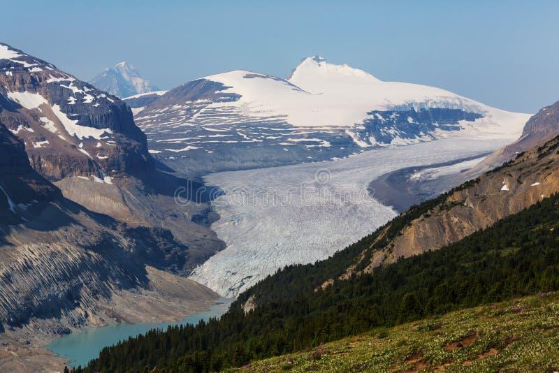 Montagne nel Canada fotografia stock