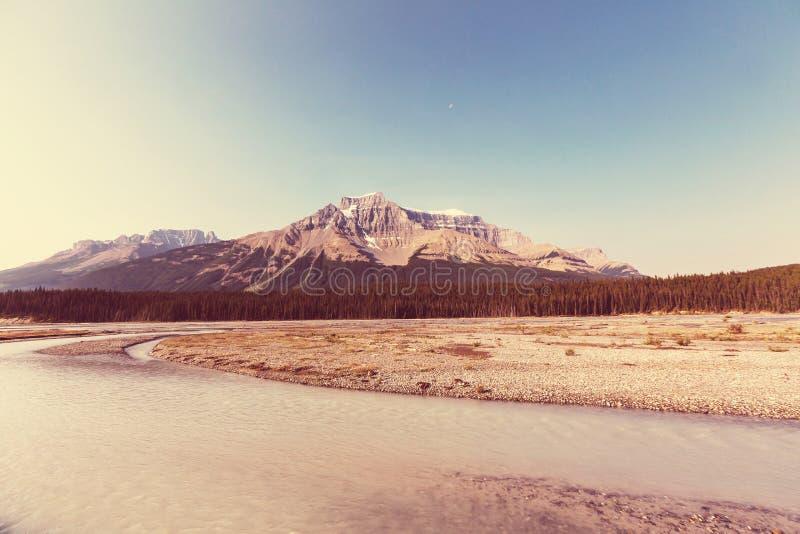Montagne nel Canada fotografia stock libera da diritti