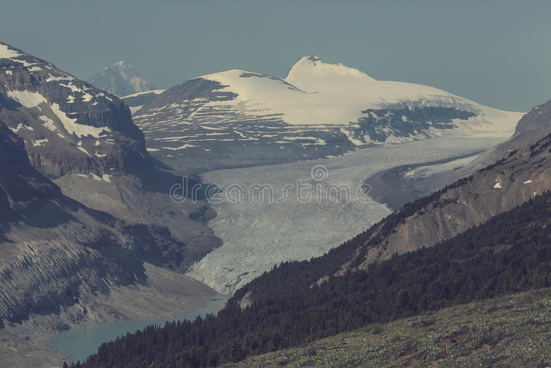 Montagne nel Canada fotografie stock