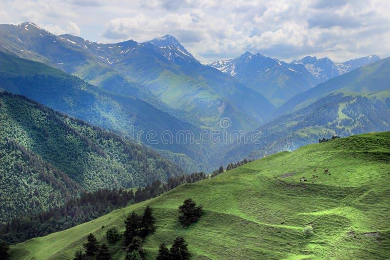 Montagne nella regione di Tusheti (Georgia) immagini stock