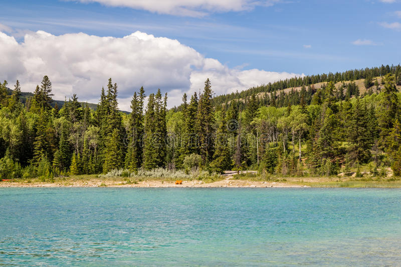 Montagne Patricia Lake Jasper National Park Alberta, Canada de pyramide photos libres de droits