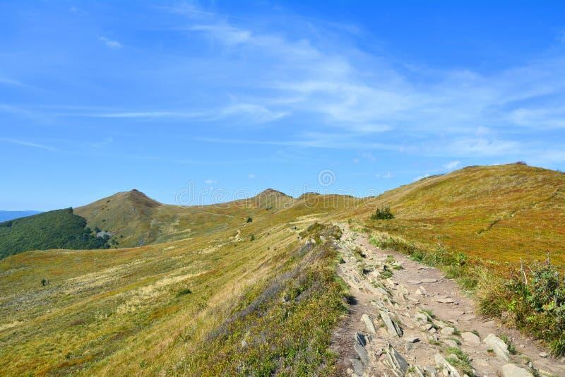 Montagne polacche Bieszczady fotografie stock