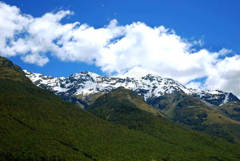 Montagne ricoperte neve in NZ immagini stock