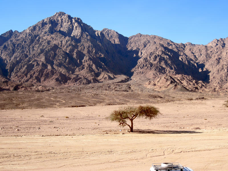 Montagne rouge sur Sinai. image libre de droits