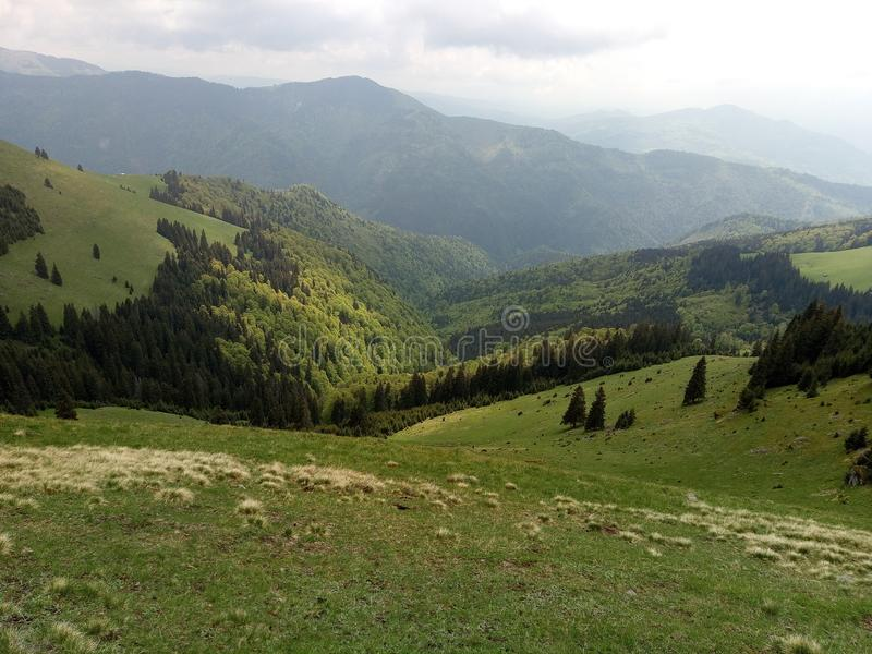 Montagne roumaine image stock