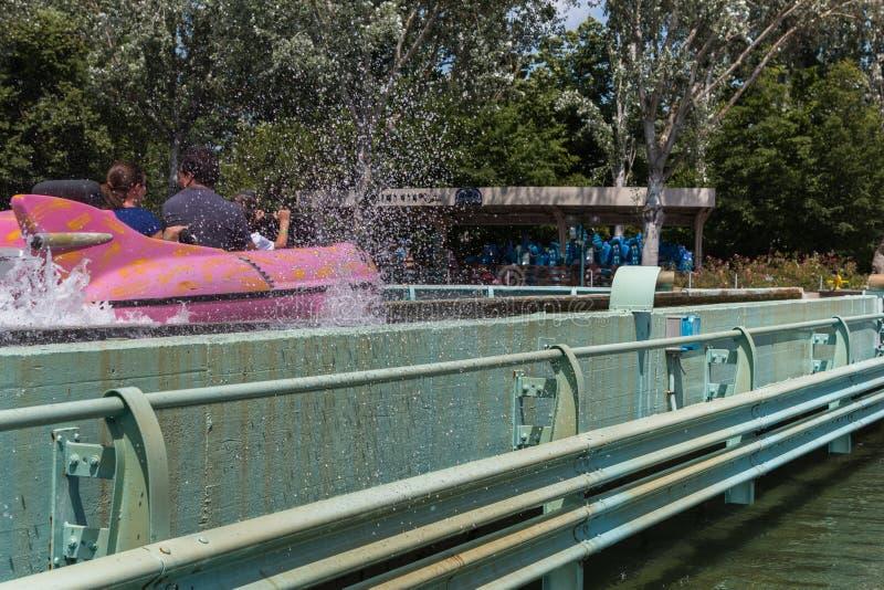 Montagne russe dell'acqua in parco di divertimenti con la spruzzata dell'acqua immagine stock libera da diritti