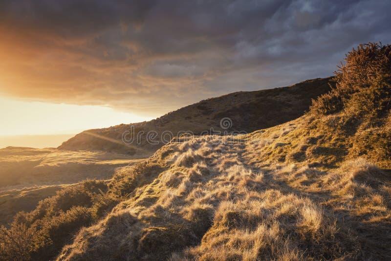 Montagne scénique dans la lumière d'or de coucher du soleil image libre de droits