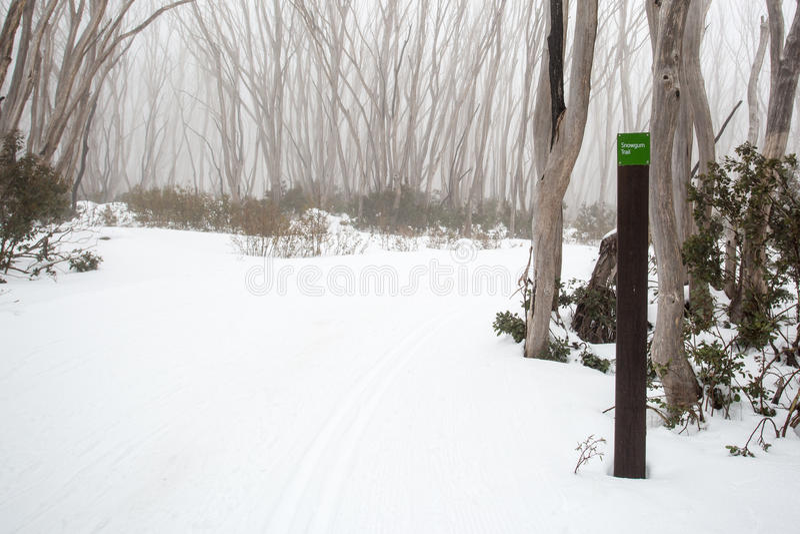 Montagne Ski Trail de lac photo stock