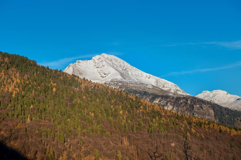 Montagne Snow-covered photo stock