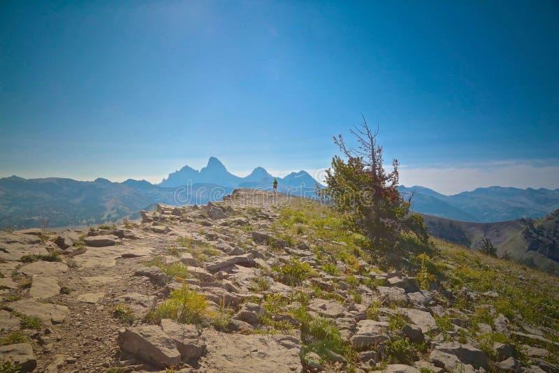 Montagne Tetons grand images libres de droits