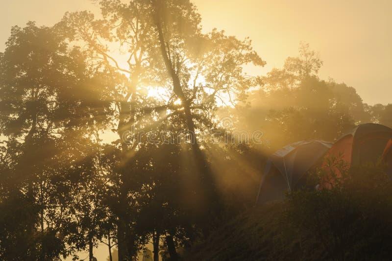 Montagne tropicale i de lever de soleil photo libre de droits