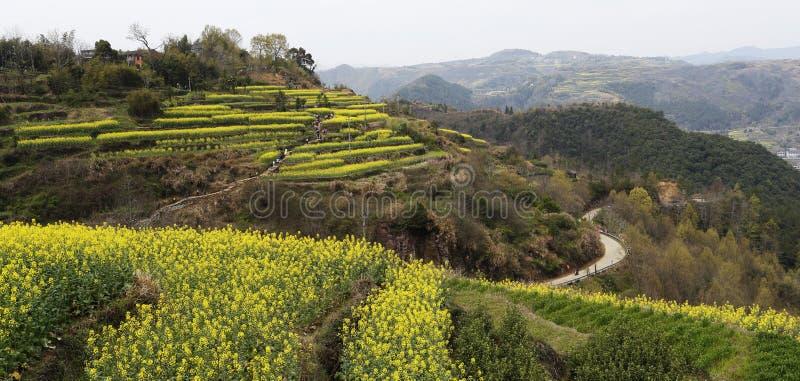Montagne, valli e picchi fotografia stock