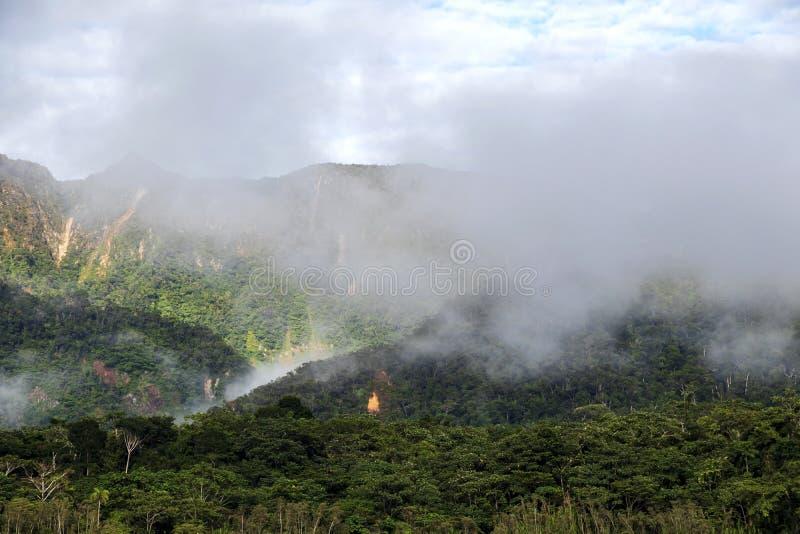 Montagne verdi della foresta pluviale in nuvole, bacino del Rio delle Amazzoni, Sudamerica fotografie stock