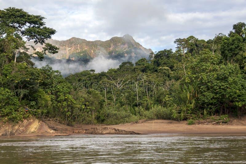 Montagne verdi della foresta pluviale in nuvole, bacino del Rio delle Amazzoni, Sudamerica fotografia stock