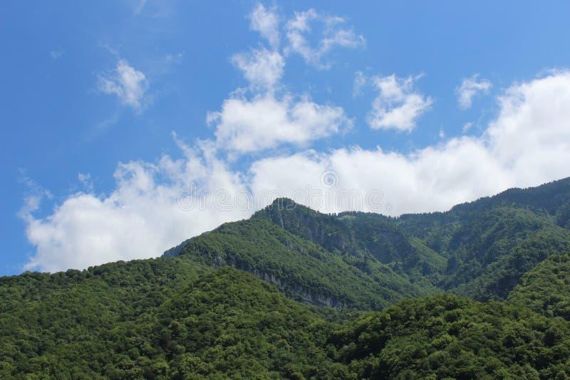 Montagne verte et le ciel bleu photo libre de droits