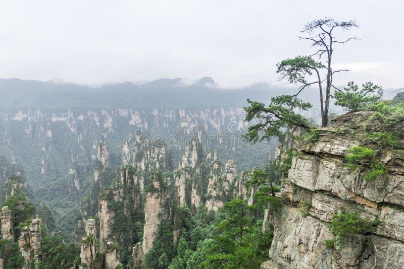 Montagne Yangjiajie de Tianzishan Tianzi photos stock