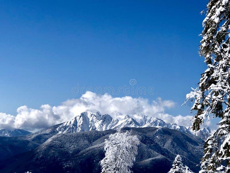 Montagnes à Sotchi photos libres de droits