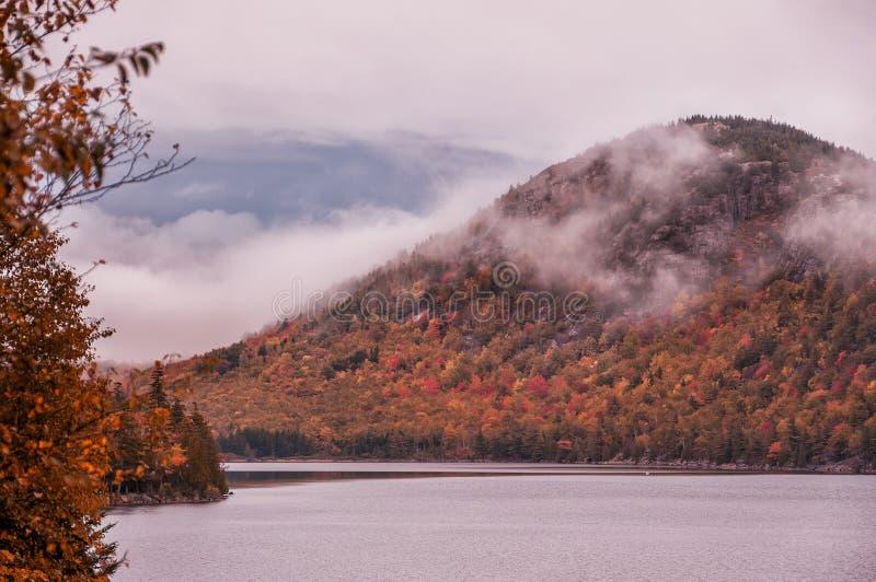 Montagnes accidentées dans le brouillard couvert de forêt lumineuse d'automne sur le rivage du lac jour sombre d'automne photos libres de droits