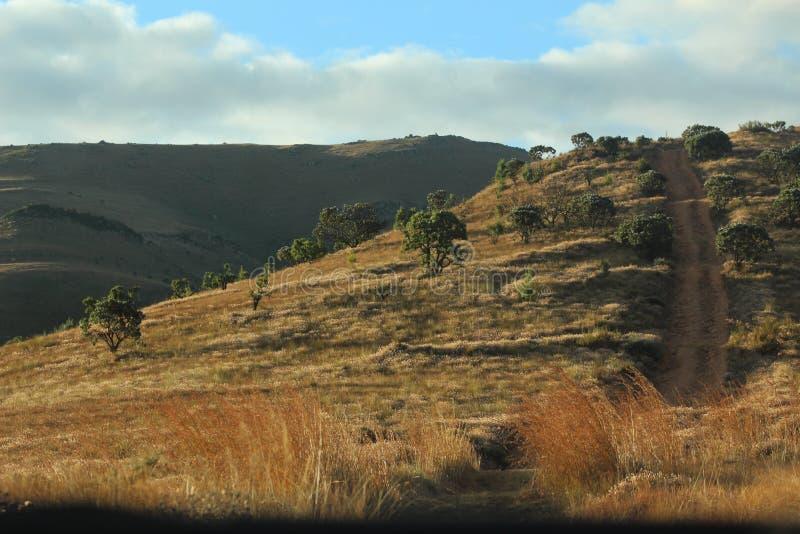 Montagnes africaines - montagnes Lydenburg illustration libre de droits